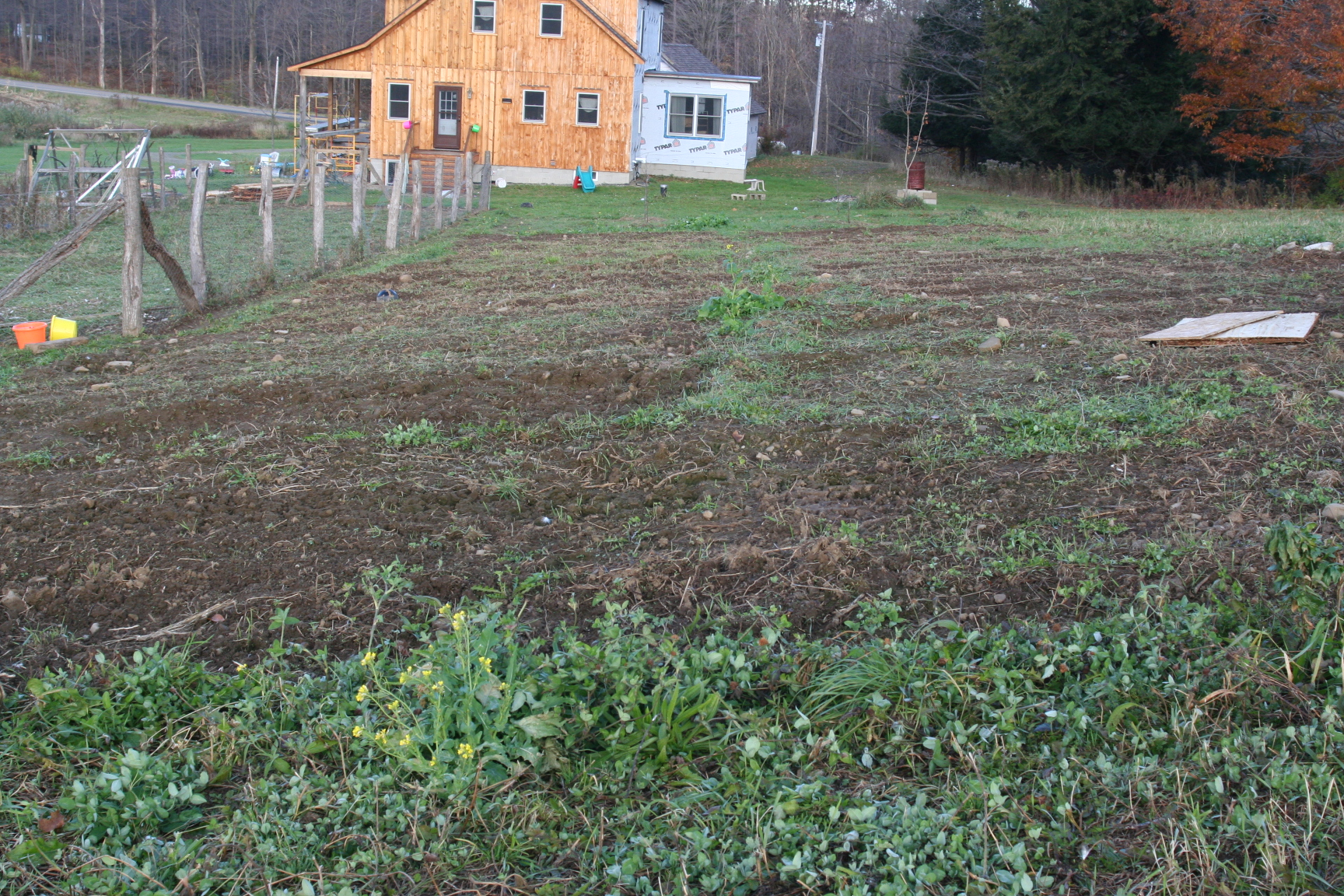 portable pig pen aka pig tractor updates pure and simple life