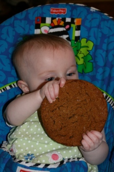 Baby J with a jumbo molasses cookie