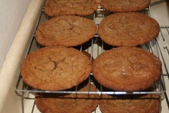 jumbo molassses cookies cooling