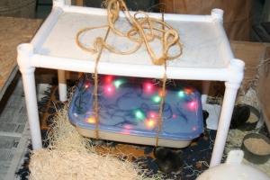 """""""ecoglow""""-style DIY brooder 2"""